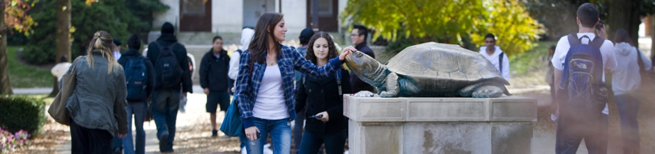 Student rubbing Testudo's noes by McKeldin Library